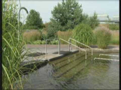 Biotop Swimming Teich Natural Pool Release 5 Youtube