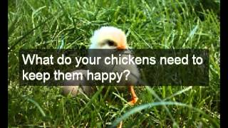 Large Chicken Coop Plans | Easy To Build Design Choice Of Large Chicken Coop Plans \ Cheap & Quick