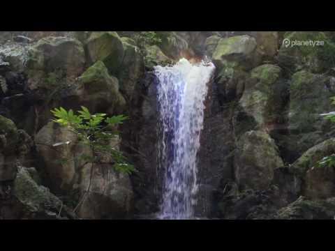 Naritasan Park,Narita | Japan Travel Guide