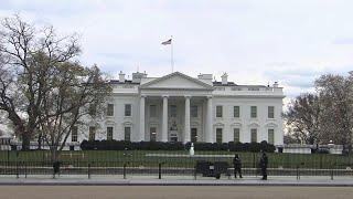 США настигла политическая лихорадка, символом которой стали подушка и \