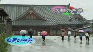 第12回 梅雨の神苑