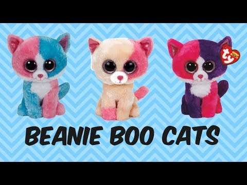 BEANIE BOO CATS And THEIR BIRTHDAYS - Can You Spot The REAL Cats Hiding In This Vid!
