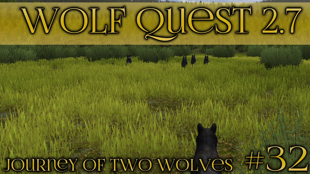 New how to make a pack on wolf quest draw wolf make quest to on how a pack stranger brothers 27 wolves staring down wolf quest ccuart Choice Image