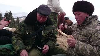 КАК ЧЕЧЕНЦЕВ ВЫГОНЯЛИ ИЗ КАЗАХСТАНА! НАГЛЫЕ КАВКАЗЦЫ