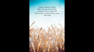 "/Cedar United Methodist Church Worship - ""Beautiful Scars"" - 2/7/2021"