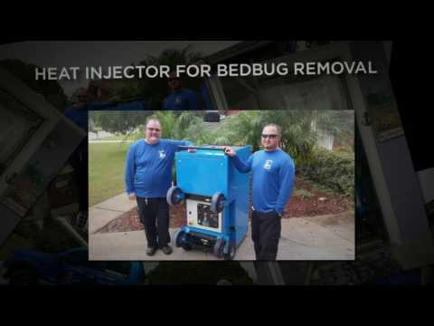 Bed Bug Control Jacksonville - BEAVERS BUG BLASTERS - Bed Bug Treatments