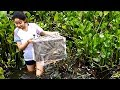 Wow !  Smart girl Use plastic bottle two holes make trap Catch fish a lot of fish In  the  Wells.