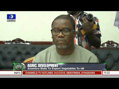 Anambra State To Export Vegetables To UK