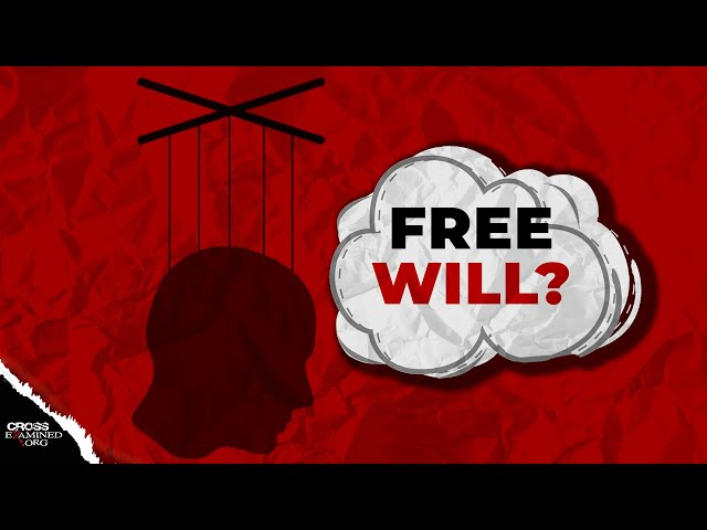 Why assume we have free will?