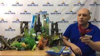 Искусственные растения для аквариума(Какие выбрать искусственные растения для аквариума? Шелковые, пластиковые или растения композиция., 2016-09-08T12:43:04.000Z)