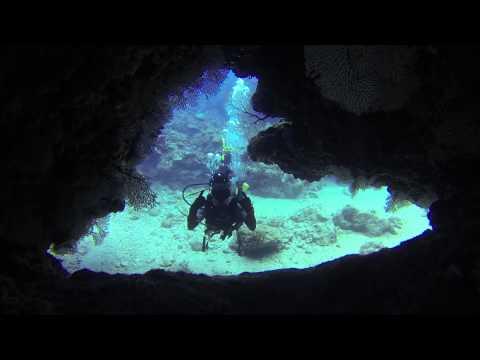Okinawa Dive Trip [April 29th - May 3rd, 2015]