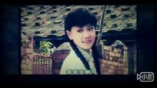 秦漢 劉雪華 幾度夕陽紅 MV 是我在做多情種之二 楊胡林演唱