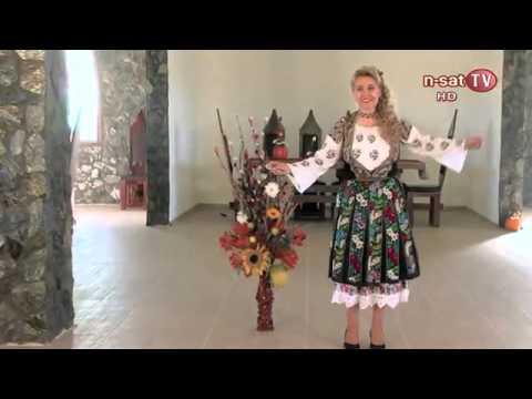 MUZICA POPULARA TEZAUR MUZICAL ROMANESC CU ANICA GANTU