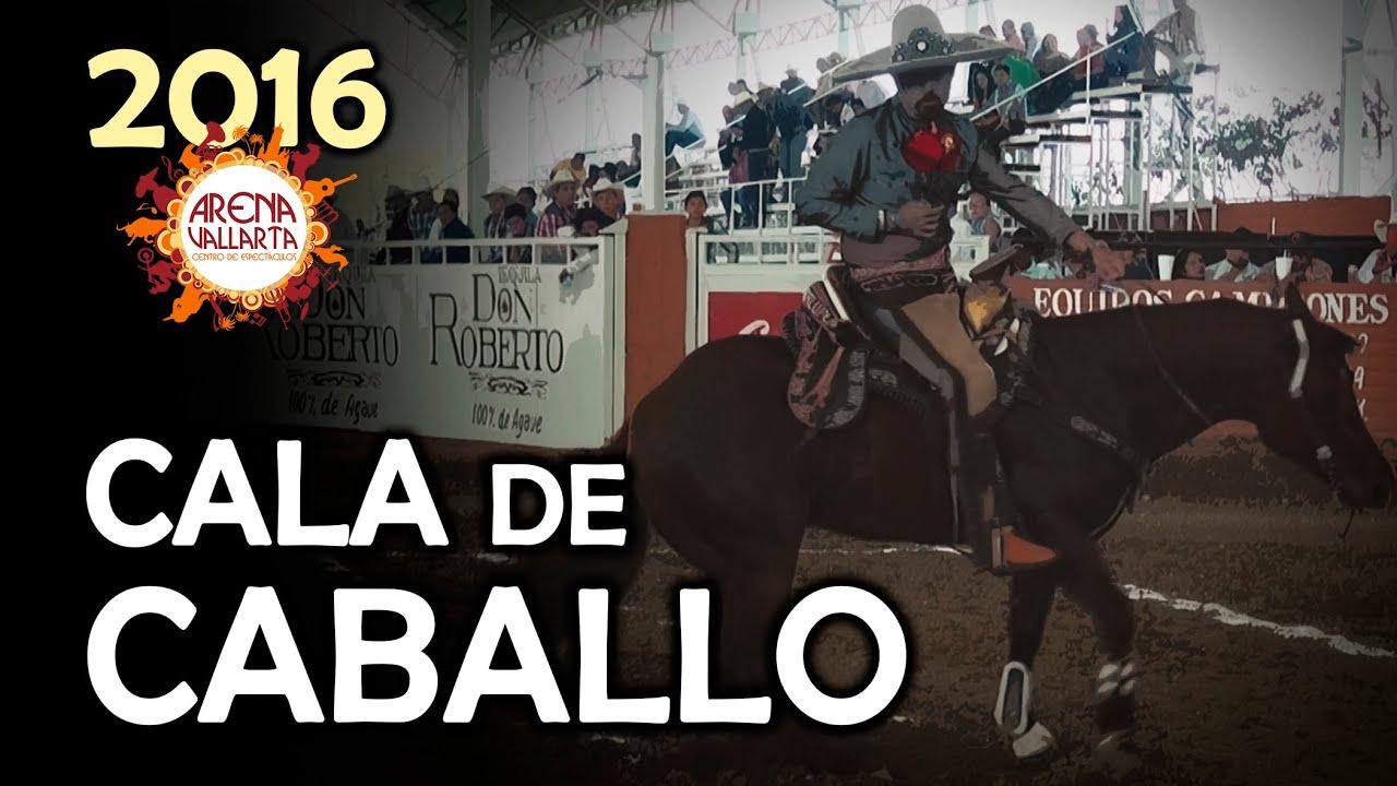 Cala de Caballo - RECUERDO Arena Vallarta 2016