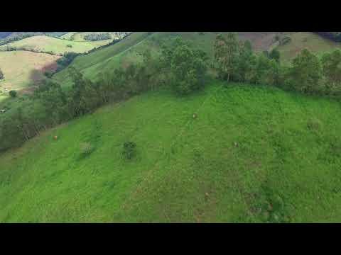 Sítio 20 hectares no Caeté em Lima Duarte - MG CÓD./REF.: FAZ35 parte 3