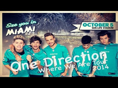 Best One Direction Concert! (Where We Are Tour) - Miami