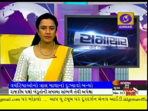 LATEST GUJARATI NEWS AT 1 PM ON DD GIRNAR241114