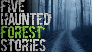 5 Real Haunted Forest Stories That Will Keep You Up At Night