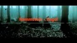 Video Rammstein - Engel (Vidéo Creator - instrumental ) HD download MP3, 3GP, MP4, WEBM, AVI, FLV Agustus 2018
