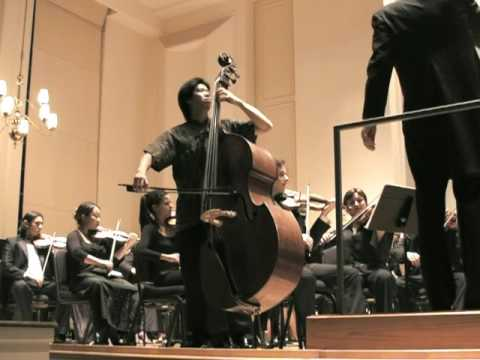 Bottesini Concerto No 2 for Double Bass