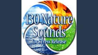 Medium Ocean Waves Breaking on Cliffs Sound Effects