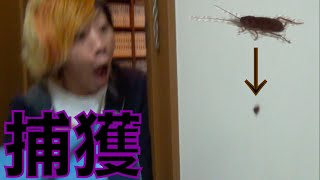【激闘】深夜のゴキブリ捕獲大作戦 ジョン万次郎 検索動画 16