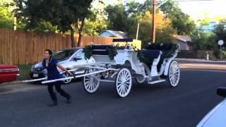 Angeli Carriages - Small Woman Pulls Limousine Carriage