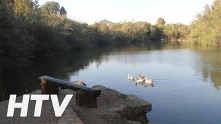 Oasis Country Park, Camping resort en Rugat