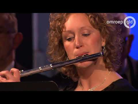 Nijmeegs mannenkoor met Amira Willighagen 25 december 2017 - Compilatie concert