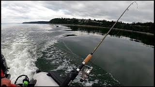 Рыбалка на Резиновой Лодке Белуга 2020