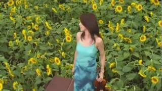 水百景の視聴動画
