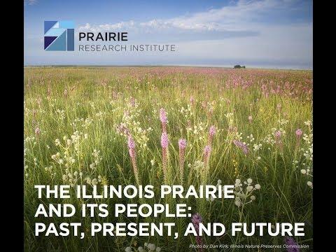 John White: The Illinois Prairie and its People