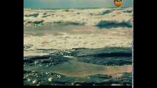 116  НЛО  Шифровка со дна океана эфир 08 11 2013