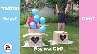 10 Twin Gender Reveal  2018 / Twins Pregnancy Announcement