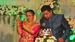 Actress Saranya Sasi Wedding Reception Gallery