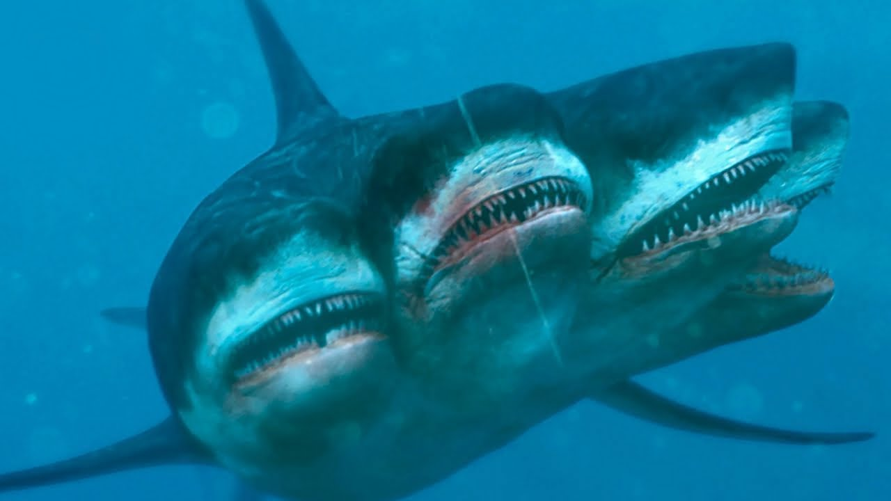 10 Rarest Shark Species in the Ocean