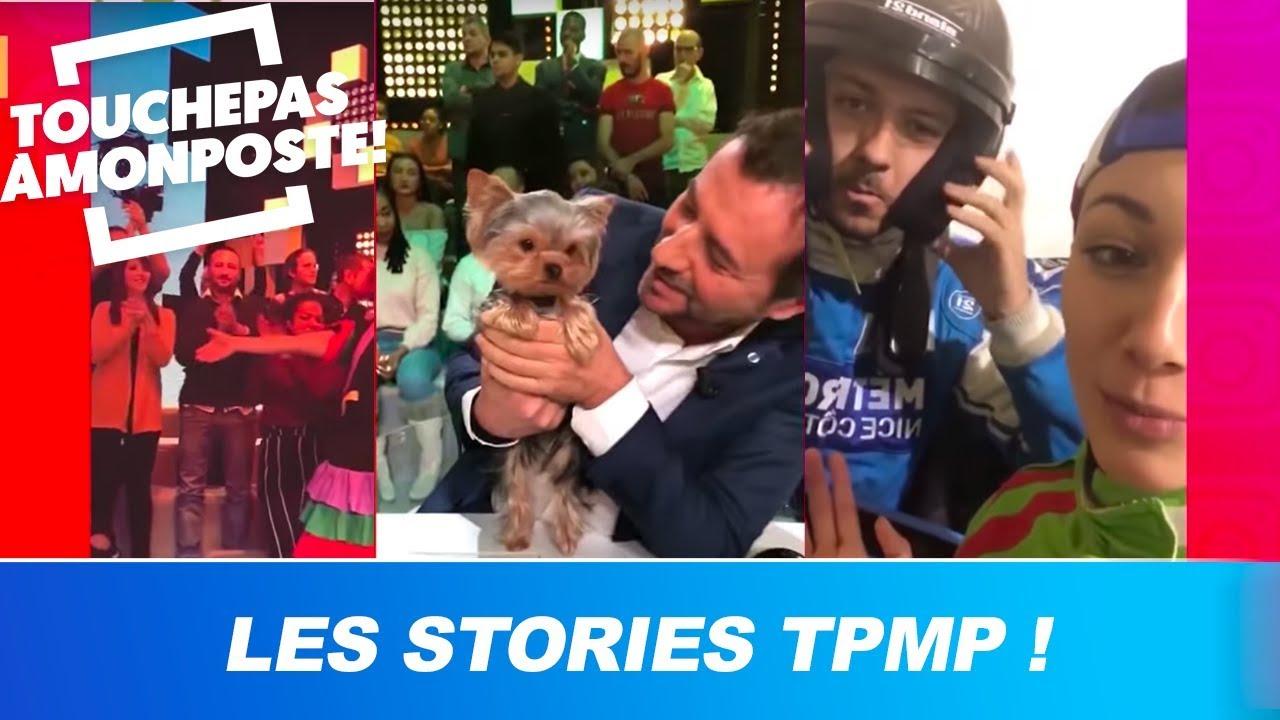 Les Stories TPMP : Booder s'ambiance, le chien de Kelly, Delphine en voiture !