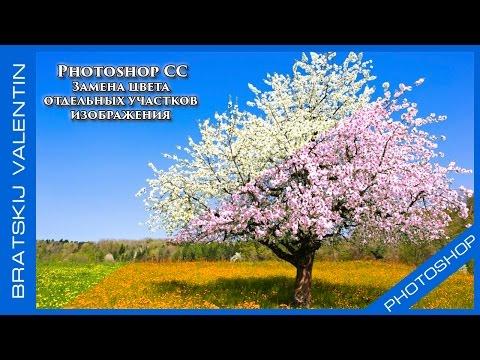 Photoshop CC 2015 Замена цвета  отдельных участков  изображения