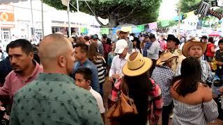 Desfile en Ayotlan