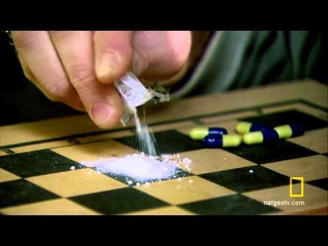 Drugs_ Inc. - Designer Drug Dealer