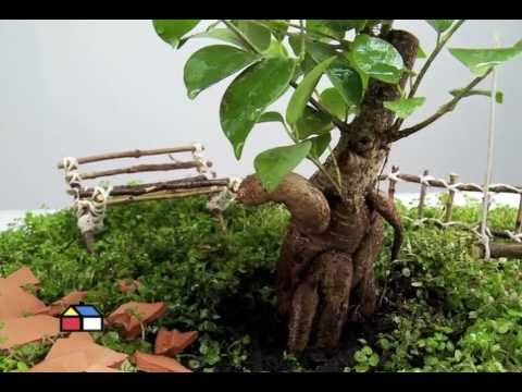 cmo hacer un jardn en miniatura paso a paso plantas