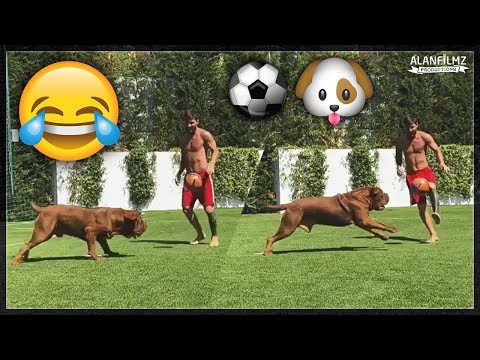 Liverpool Fc Line Up Vs Porto