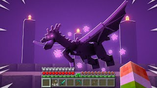 FIGHTING A REALISTIC ENDERDRAGON!
