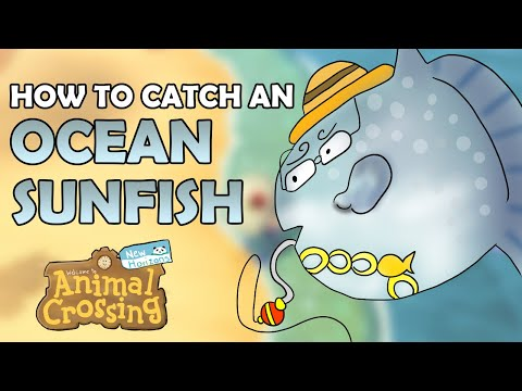 How To Catch An OCEAN SUNFISH In Animal Crossing New Horizons [4,000 Bells - Detailed Fish Guide]