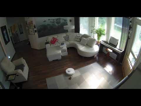 Robotic Vacuum Cleaner Smears Dog Poop on Carpet - 1069832-4