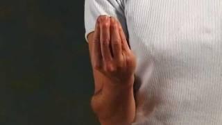Prontuario dei gesti italiani TUTTO