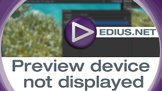 EDIUS.NET Podcast - Preview device not displayed