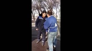 Отлов бездомных собак в Казахстане