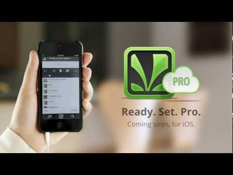 Saavn Pro - Offline listening, Ad-Free Digital Music Service