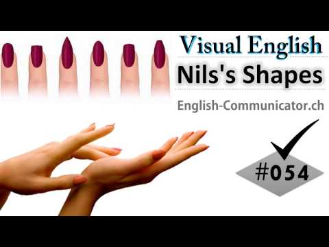 #054 Visual English Language Learning Practical Vocabulary Women's Nils's Shapes